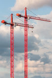Two red crane on the sky background Stock Images