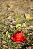 Two red cups on a grass Stock Photography