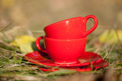 Two red cups on a grass Royalty Free Stock Images