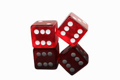 Two Red Dice royalty free stock photography