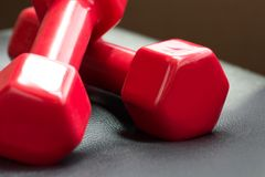 Two red dumbbell on black leather chair Royalty Free Stock Images