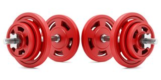 Two red dumbbells isolated on white royalty free stock photo