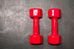 Two red dumbbells lie parallel to each other on the gray floor in the right part of the photo stock images