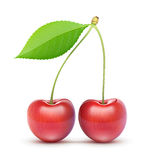 Two red fresh cherries Stock Images