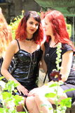Two red hair girl friends royalty free stock images