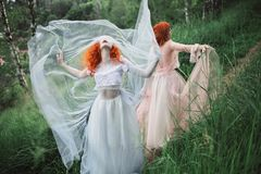 Two red-haired girls in dresses of tulle on the background of a summer ravine. stock photo
