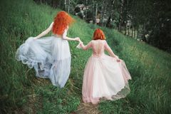 Two red-haired girls in dresses of tulle on the background of a summer ravine. royalty free stock image
