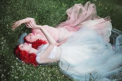 Two red-haired girls in dresses of tulle on the background of a summer ravine. royalty free stock photography