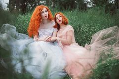 Two red-haired girls in dresses of tulle on the background of a summer ravine. stock images