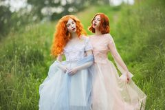Two red-haired girls in free dresses of tulle on the background of a summer ravine. stock photos