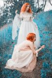 Two red-haired girls in free dresses of tulle on the background of a summer ravine. Two slender models posing in nature stock photo