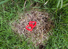 Two red heart on the grass. Never feel alone when love is all around Stock Image