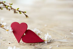 Two red heart shapes with blooming branches on bright rustic woo Royalty Free Stock Photo