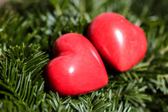 Two red hearts on background of fir branches. Valentine Day Stock Photography