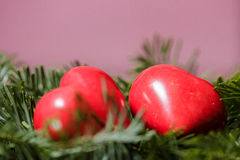 Two red hearts on background of fir branches. Valentine Day Royalty Free Stock Photos