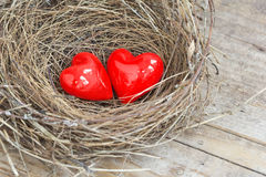 Two red hearts in a bird nest Stock Photos