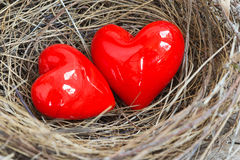 Two red hearts in a bird nest Royalty Free Stock Photos