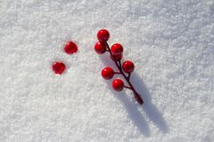 two red hearts and a branch with red berries in the snow royalty free stock photo
