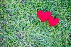 Two red hearts on a lawn background. Holiday Valentine`s Day, wedding stock photo
