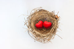 Two red hearts in nature bird nest Royalty Free Stock Photos