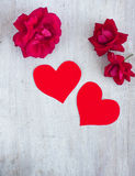 Two red hearts and scarlet roses on the white board, top view Royalty Free Stock Image