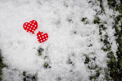 Two red hearts. royalty free stock images