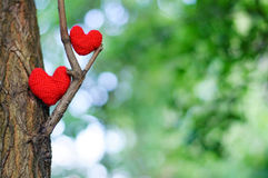 Two red hearts on tree Royalty Free Stock Image