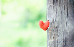 Two red hearts on wooden background Stock Photo