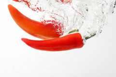 Two red hot chili pepper falling into water Royalty Free Stock Photography