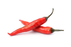 Two Red Hot Chili Peppers Royalty Free Stock Images