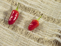 Two Red hot chili peppers Stock Photo