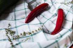 Two red hot chili peppers are lying on a draped fabric. Hurbs are used as decoration. Stock Photo