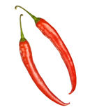 Two red hot chilly peppers isolated Stock Photos