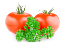Two red juicy tomatoes and fresh parsley  Stock Image