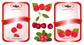Two red labels with berries. Vector Royalty Free Stock Images