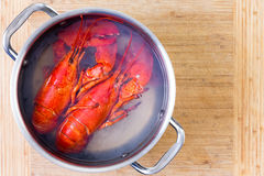 Two Red Lobsters In A Pot Of Boiling Water Royalty Free Stock Images
