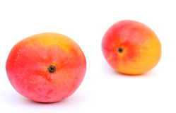 Two mangoes  on white Royalty Free Stock Photography