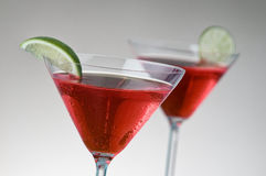 Two red martinis Stock Image