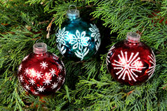 Two red and one blue Christmas balls on green pine needles Stock Photos