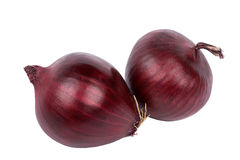 Two red onion bulbs Stock Images