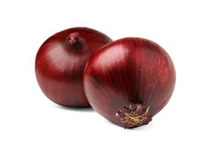 Two red onions. Isolated onions. Two red onion bulbs isolated on white background royalty free stock photos
