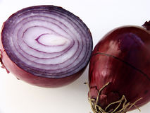 Two red onions Stock Images