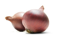 Two Red Onions Stock Photos