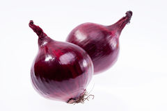 Two red onions isolated on white background closeup Stock Images