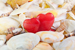 Two red opal hearts against from cockleshells Stock Photography