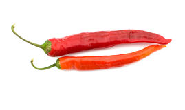 Two red pepper. Red hot pepper isolated on a white background, a close up Royalty Free Stock Image
