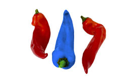 Two red pepper and one blue Royalty Free Stock Photo