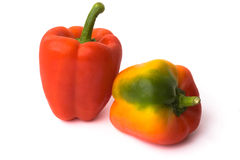 Two red peppers Royalty Free Stock Image