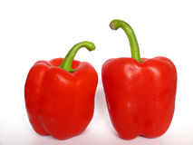 Two red peppers Royalty Free Stock Photo