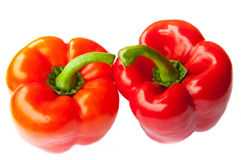 Two red peppers Stock Photography